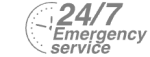24/7 Emergency Service Pest Control in South Lambeth, SW8. Call Now! 020 8166 9746